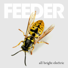 All Bright Electric (Deluxe) - Feeder