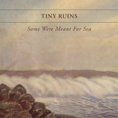 Some Were Meant For Sea - Tiny Ruins