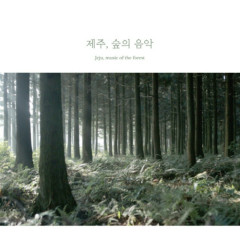 Jeju, Music Of The Forest - Beck Junghyun