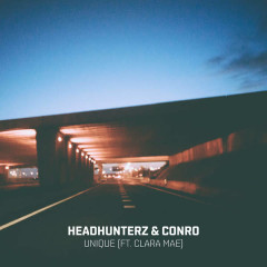 Unique (Single) - Headhunterz,Conro
