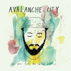 We Are For The Wild Places - Avalanche City