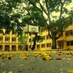 Trở Về Ngôi Trường Xưa (Single)