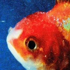 Big Fish Theory - Vince Staples