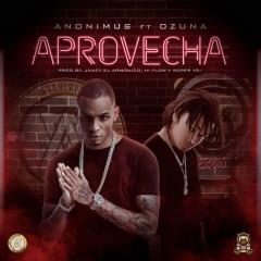 Aprovecha (Single) - Anonimus, Ozuna