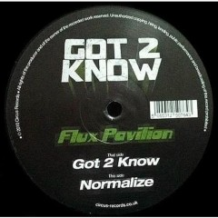Got 2 Know l Normalize - Flux Pavilion