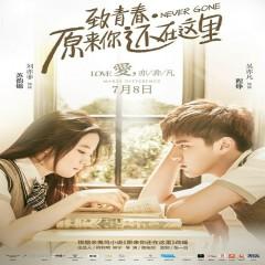 致青春·原来你还在这里 音乐原声 / Hóa Ra Anh Vẫn Ở Đây Movie OST