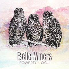 Powerful Owl - Belle Miners