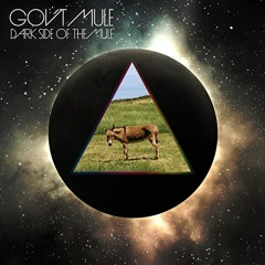 Dark Side Of The Mule (CD1) - Gov't Mule