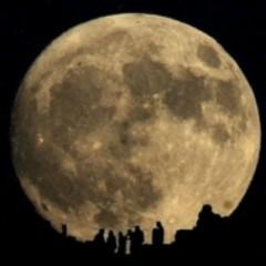 Admire The Moon