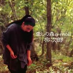 Itoshi No Mori, A-Moll / 愛しの森 a-mol