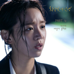 My Golden Life OST Part.4 - Park SunYe