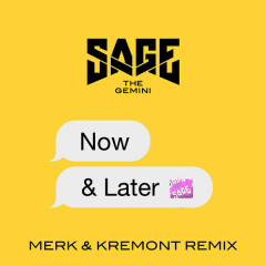 Now And Later (Merk & Kremont Remix) (Single)