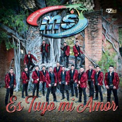 Es Tuyo Mi Amor (Single)