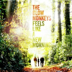 Feels Like A New Morning (CD1) - The Blow Monkeys