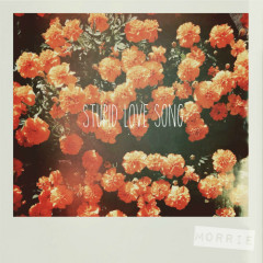 Stupid Love Song (Single) - Morrie