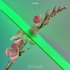 Never Be Like You (Remixes) - Flume