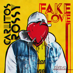 Fake Love (Single)