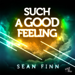 Such A Good Feeling (CDR) - Sean Finn
