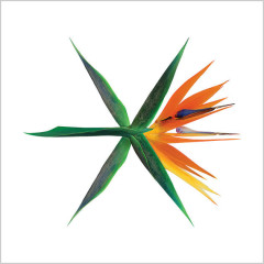 The War (The 4th Album) - EXO