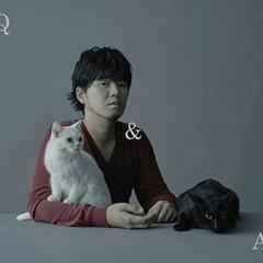 Q&A - Motohiro Hata