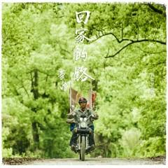 回家的路(失孤/2015央視春晚 主題曲) / Thất Cô OST - Lưu Đức Hoa