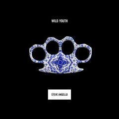 Wild Youth - Steve Angello