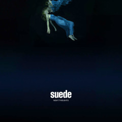 Night Thoughts - Suede