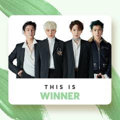 Những Bài Hát Hay Nhất Của Winner - WINNER