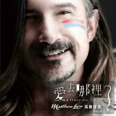 Where Does Love Go - Matthew Lien
