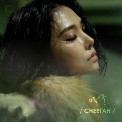 Stagger (Single) - Cheetah