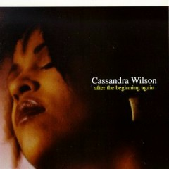 After The Beginning Again - Cassandra Wilson