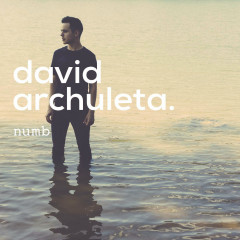 Numb (Single) - David Archuleta