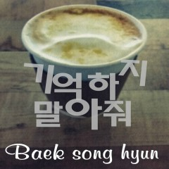Don't Remember (Single) - Baek Song Hyun