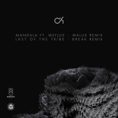 Mandala (Malux Remix) / Last Of The Tribe (Break Remix)
