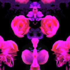Deluca (Single) - Ruby Empress