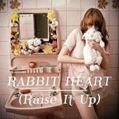 Rabbit Heart (Raise It Up) (Single)