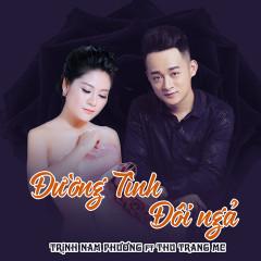 Đường Tình Đôi Ngả (Single) - Trịnh Nam Phương, Thu Trang MC