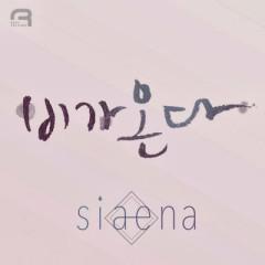 Biga Onda (비가 온다) - Siaena