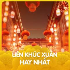 Liên Khúc Xuân Hay Nhất - Various Artists
