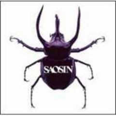 Saosin (Japan Import) - Saosin