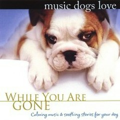 Music Dogs Love: While You Are Gone - Bradley Joseph