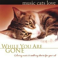 Music Cats Love: While You Are Gone - Bradley Joseph