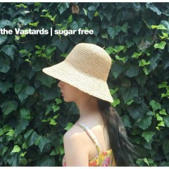 Sugar Free (Single) - The Vastards