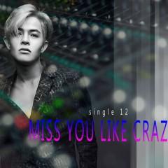 Miss You Like Crazy (Single)
