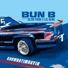 Knowhatimsayin (Single) - Bun B