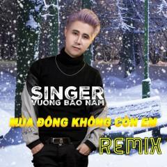 Mùa Đông Không Còn Em (Remix) (Single) - Vương Bảo Nam