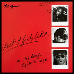 What It Feels Like (Single) - Tish Hyman, Ty Dolla $ign, DeJ Loaf