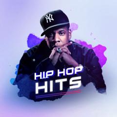 Hip-Hop Hits - Various Artists