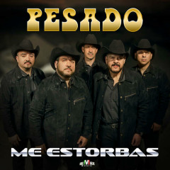 Me Estorbas (Single) - Pesado