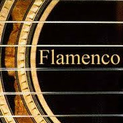 Flamenco Guitar Collection